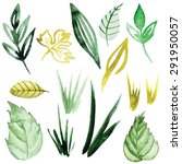 vector watercolor grass   Shutterstock .eps vector #291950057