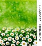 wildflowers daisies | Shutterstock . vector #292004444