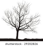 silhouette cherry tree black...