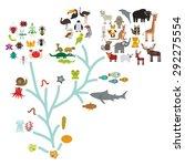 evolution in biology  scheme... | Shutterstock .eps vector #292275554