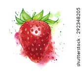 strawberry drawn in watercolor... | Shutterstock . vector #292348205