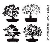 Set Of Black Bonsai Trees.