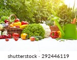 fresh organic vegetables and... | Shutterstock . vector #292446119