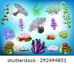 Marine Plants In The Set