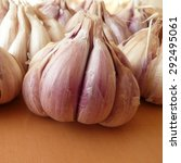 Small photo of Garlics (Allium sativum)
