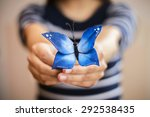 Sugar Blue Butterfly For Decor...