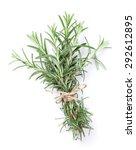fresh garden herbs. rosemary....   Shutterstock . vector #292612895