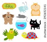 Vector Pets Illustration...
