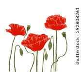 poppies on a white background.... | Shutterstock .eps vector #292808261