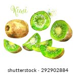 whole kiwi fruit and his sliced ... | Shutterstock .eps vector #292902884