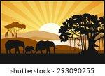 african savanna an evening... | Shutterstock .eps vector #293090255