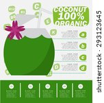 coconut infographics   fruit ... | Shutterstock .eps vector #293123645