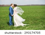 kissing happy married couple on ... | Shutterstock . vector #293174705