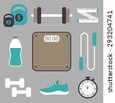 vector fitness flat icon set.... | Shutterstock .eps vector #293204741