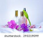 perfume bottles  | Shutterstock . vector #293219099