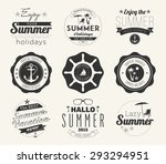 typographic summer themed label ... | Shutterstock .eps vector #293294951