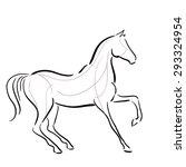 black and white horse s... | Shutterstock .eps vector #293324954