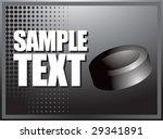 silver horizontal hockey puck... | Shutterstock .eps vector #29341891
