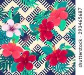ethnic geometric ornamental... | Shutterstock .eps vector #293465687