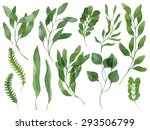 a set of vector watercolor...   Shutterstock .eps vector #293506799
