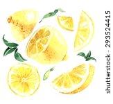 watercolor set of lemons. lemon ... | Shutterstock .eps vector #293524415