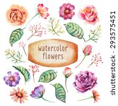 set of hand drawn watercolor... | Shutterstock .eps vector #293575451