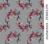 watercolor garden rowan plant... | Shutterstock .eps vector #293601194
