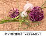 Three Varieties Of Garlic ...