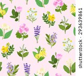 essential flowers illustrations ...   Shutterstock .eps vector #293639861