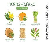 herbs and spices collection 5.... | Shutterstock .eps vector #293640554