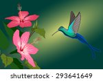 colorful hummingbird and pink... | Shutterstock .eps vector #293641649