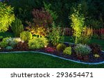 illuminated garden by led... | Shutterstock . vector #293654471