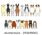 Stock vector standing dogs 293698001