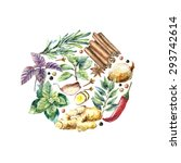 watercolor herbs and spices... | Shutterstock .eps vector #293742614