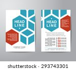 hexagonal brochure flyer design ... | Shutterstock .eps vector #293743301