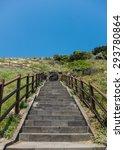 jeju island   Shutterstock . vector #293780864