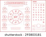 education infographic template... | Shutterstock .eps vector #293803181