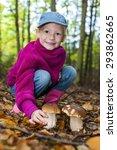 mushroom picking little girl in ... | Shutterstock . vector #293862665