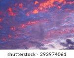 wetland coastline wetland... | Shutterstock . vector #293974061