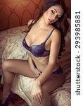 sexy beautiful brunette girl in ...   Shutterstock . vector #293985881