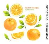 watercolor vector oranges | Shutterstock .eps vector #294192689