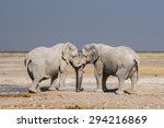 2 african elephants covered in... | Shutterstock . vector #294216869