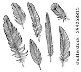 writing feathers | Shutterstock .eps vector #294258815