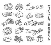 vector set  hand drawn... | Shutterstock .eps vector #294329135