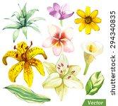 vector illustration with... | Shutterstock .eps vector #294340835