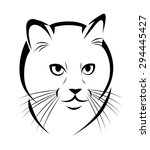 stylized face of cat isolated...   Shutterstock .eps vector #294445427