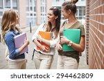 this university is the best in... | Shutterstock . vector #294462809
