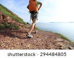 young woman backpacker walking... | Shutterstock . vector #294484805