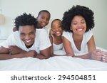 happy family having fun... | Shutterstock . vector #294504851