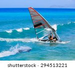 windsurfing and dolphin | Shutterstock . vector #294513221